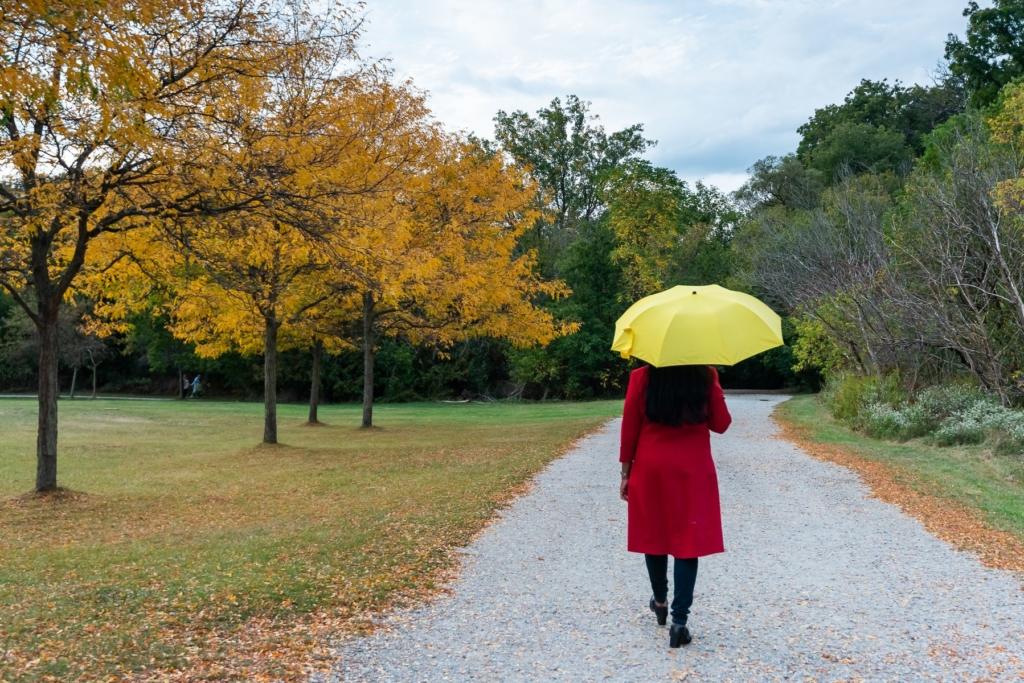 creative_captures-autumn_walk-87378032